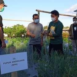 Klungkung Gandeng MSP Unwar dalam Mewujudkan Kawasan Organik